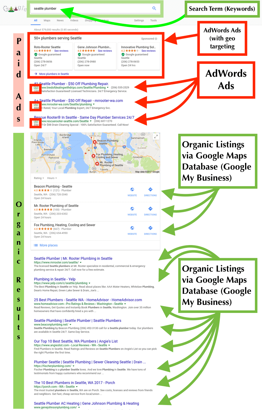 SERP Infographic